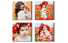 Photo Canvas Display Panels