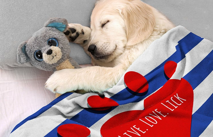 Puppy in bed with custom dog blanket with personalised text design