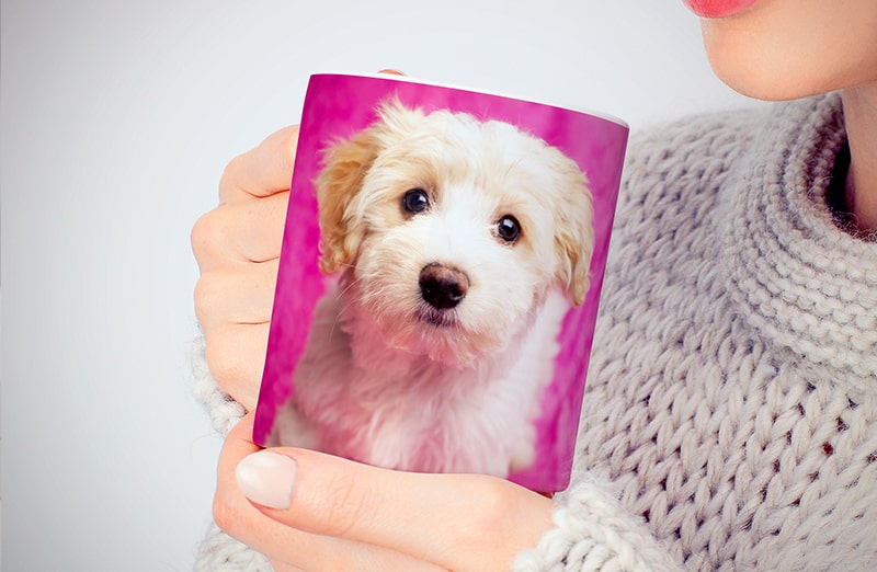 Personalised photo mug with your own photo of a dog on